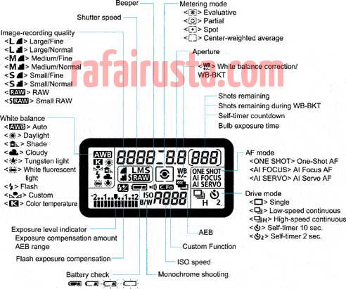40D LCD