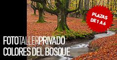 FotoTaller Privado Colores del Bosque